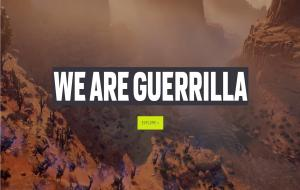 Website Guerilla Games © www.guerrilla-games.com